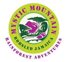 Mystic Mountain Rainforest logo